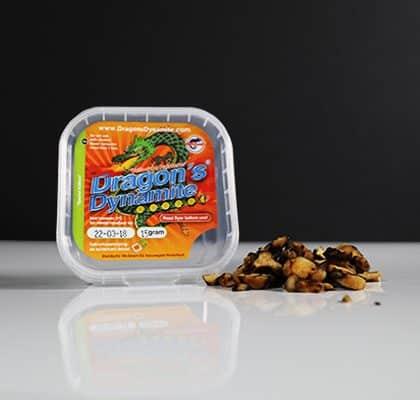 Ecuadorian Mushroom Spore – Tatanka Amsterdam Webshop