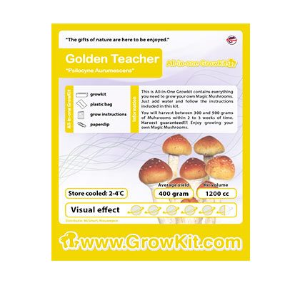 Golden Teacher Mushroom XL Growkit